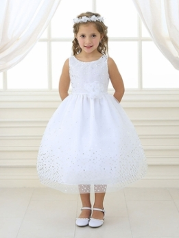 Sweet Mesh Flower Girl Dress with Silver Dots